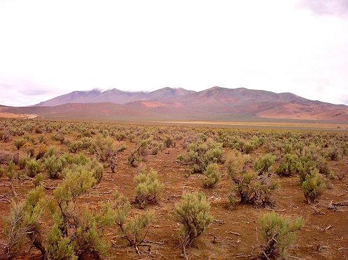 05-0591-55 / 10.32 Acres in Humboldt County, Nevada