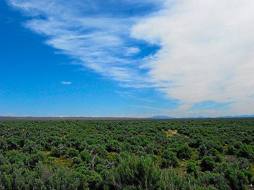 019-009-004 / 1.03 Acres in Elko County, Nevada