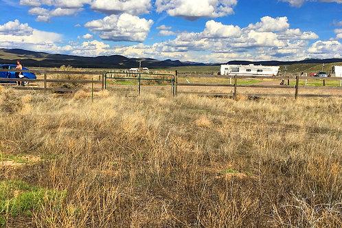 003-452-03 / 10.00 Acres in Eureka County, Nevada