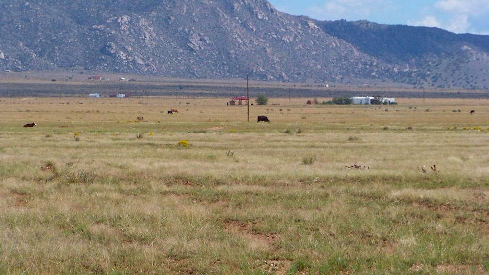 1018021360080000000 / 10.00 Acres in Valencia County, New Mexico