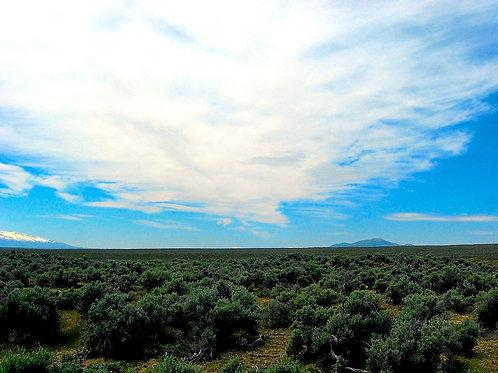 020-003-010 / 1.03 Acres in Elko County, Nevada