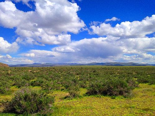 012-002-003 / 2.27 Acres in Elko County, Nevada