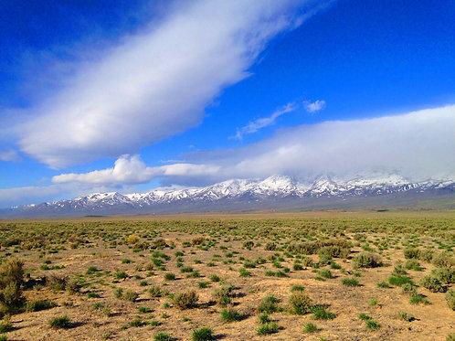 007-11K-005 / 40.00 Acres in Elko County, Nevada