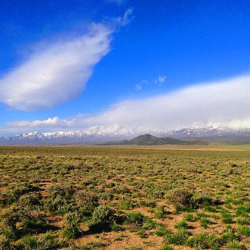 07-0363-14 / 40.04 Acres in Humboldt County, Nevada