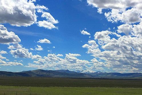 003-431-04 / 11.78 Acres in Eureka County, Nevada