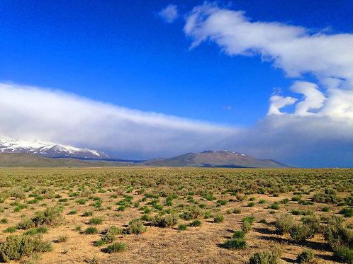 007-13E-011 / 40.00 Acres in Elko County, Nevada