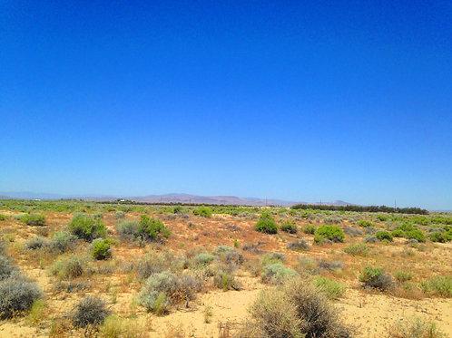 005-740-08 / 39.13 Acres in Eureka County, Nevada