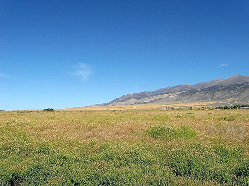 010-381-04 / 1.50 Acres in Pershing County, Nevada