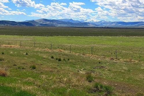 003-443-05 / 11.22 Acres in Eureka County, Nevada