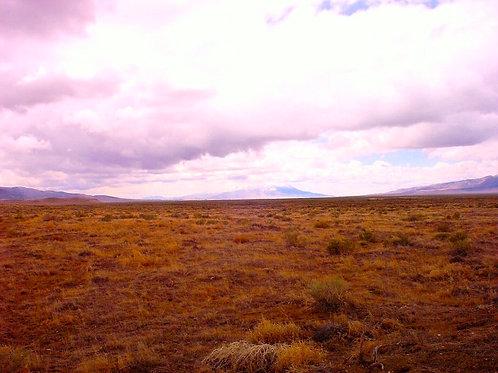 05-0717-05 / 43.00 Acres in Humboldt County, Nevada