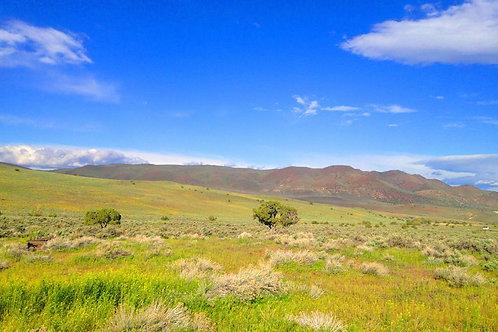 003-423-001 / 1.54 Acres in Elko County, Nevada