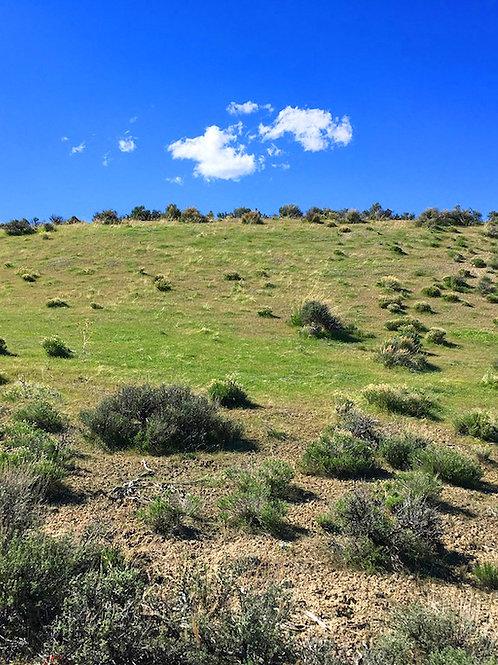 028-006-008 / 2.07 Acres in Elko County, Nevada