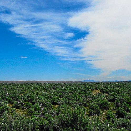 020-016-005 / 1.03 Acres in Elko County, Nevada