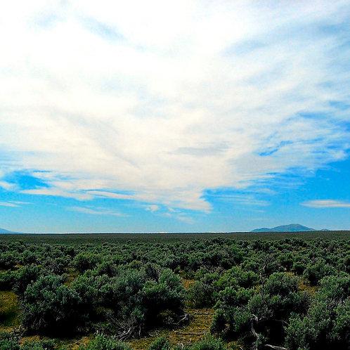 020-004-006 / 1.13 Acres in Elko County, Nevada