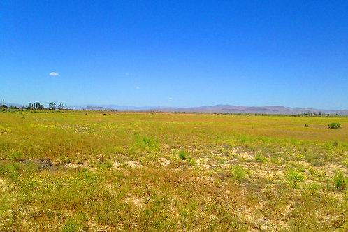 002-017-31 / 0.92 Acres in Eureka County, Nevada
