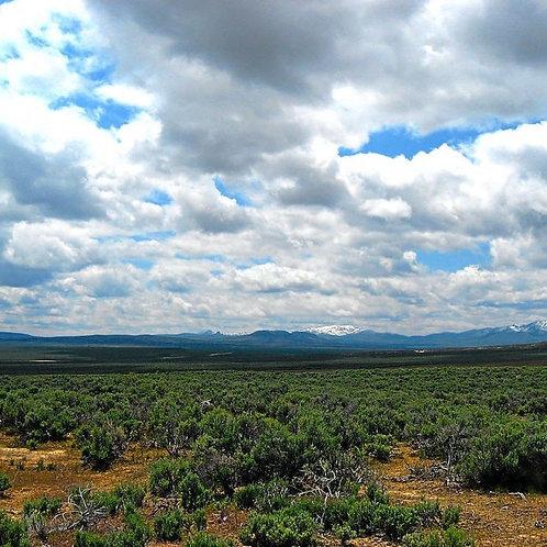 028-018-005 / 2.07 Acres in Elko County, Nevada