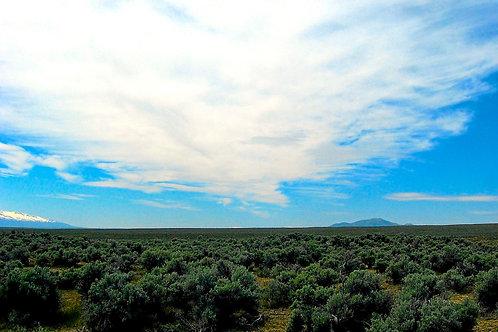 019-004-007 / 1.13 Acres in Elko County, Nevada