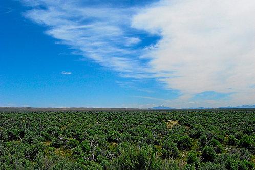 018-013-005 / 0.85 Acres in Elko County, Nevada