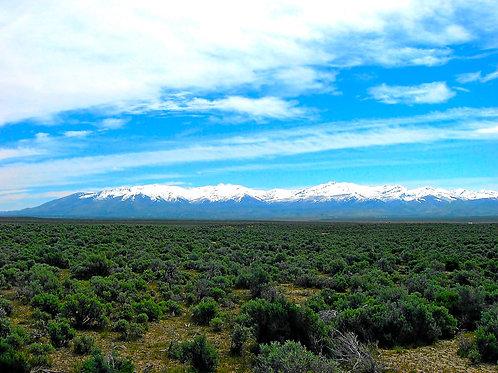 020-004-011 / 1.03 Acres in Elko County, Nevada