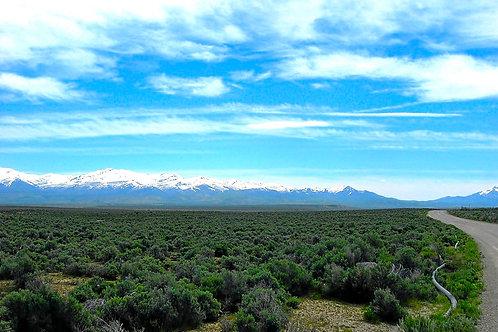 019-005-009 / 1.14 Acres in Elko County, Nevada
