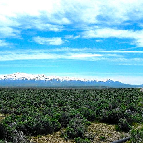 020-007-007 / 1.13 Acres in Elko County, Nevada