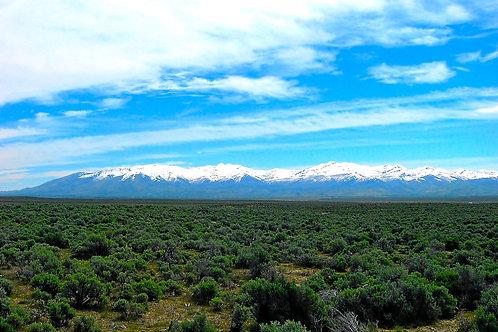 019-001-005 / 1.03 Acres in Elko County, Nevada