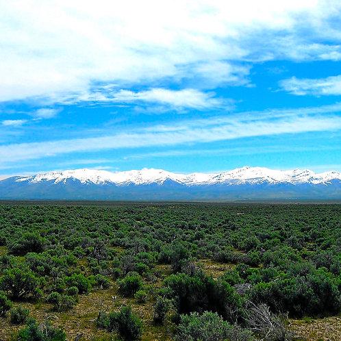 020-014-008 / 2.06 Acres in Elko County, Nevada