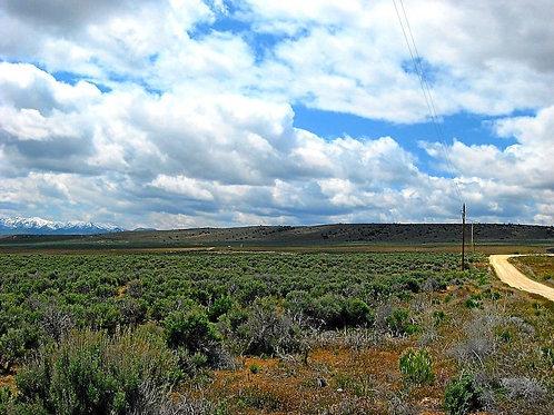 028-008-020 / 4.34 Acres in Elko County, Nevada