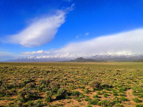 006-56B-005 / 40.00 Acres in Elko County, Nevada