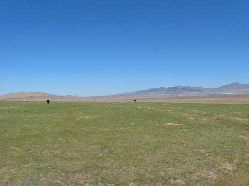 05-0591-56 / 10.34 Acres in Humboldt County, Nevada