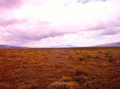003-540-04 / 56.39 Acres in Pershing County, Nevada