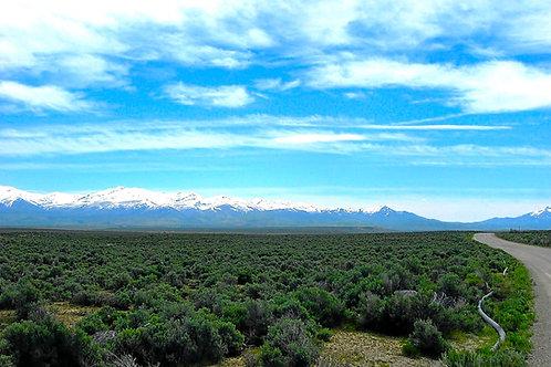 019-006-003 / 1.13 Acres in Elko County, Nevada