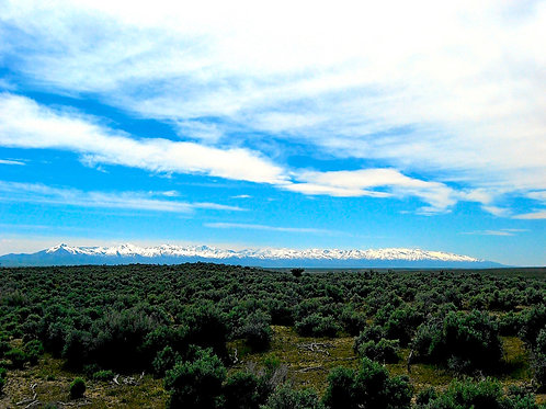 020-004-001 / 1.14 Acres in Elko County, Nevada