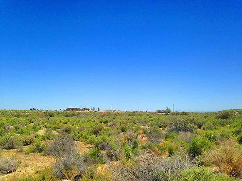 002-054-13 / 0.92 Acres in Eureka County, Nevada