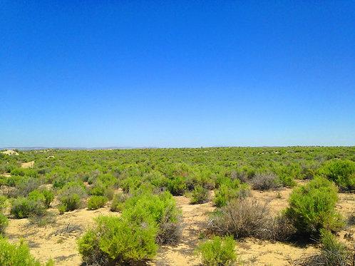 002-027-17 / 0.69 Acres in Eureka County, Nevada