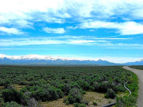 019-007-012 / 1.03 Acres in Elko County, Nevada