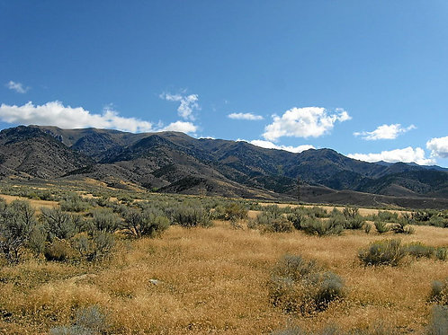 010-382-01 / 1.50 Acres in Pershing County, Nevada