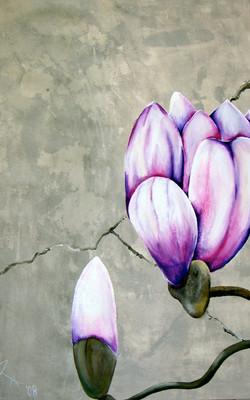 2-luik magnolia deel 1