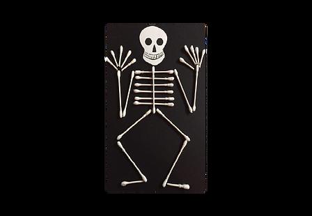 esqueleto.png