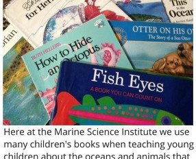 Children's Marine Life Books -- A Swimming Holiday Gift