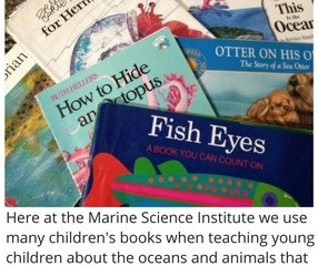 Children's Marine Life Books -- A Swimming Holiday Gift