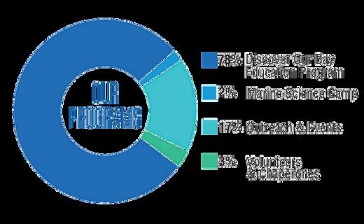 programs chart.PNG