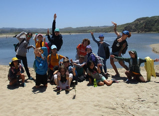 Marine Science Camp: Scholarships