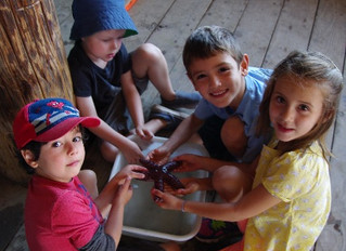 Preventing Summer Learning Loss with Marine Science Fun