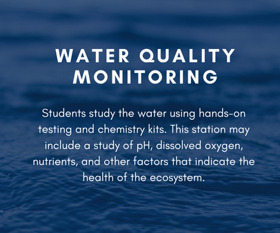 Water Quality Monitoring (1).png