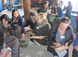 "Teachers look to nature for ideas at recent ""Ship to Shore"" Teacher Workshop"
