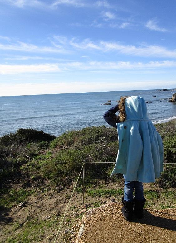 Overlooking the beach
