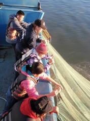 Net on boat (600x800).jpg