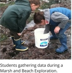 Students investigate wrack lines, measure fish while learning the scientific method