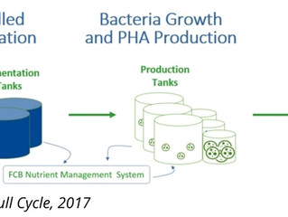 Marine Science in the News: Bioplastics Part 1